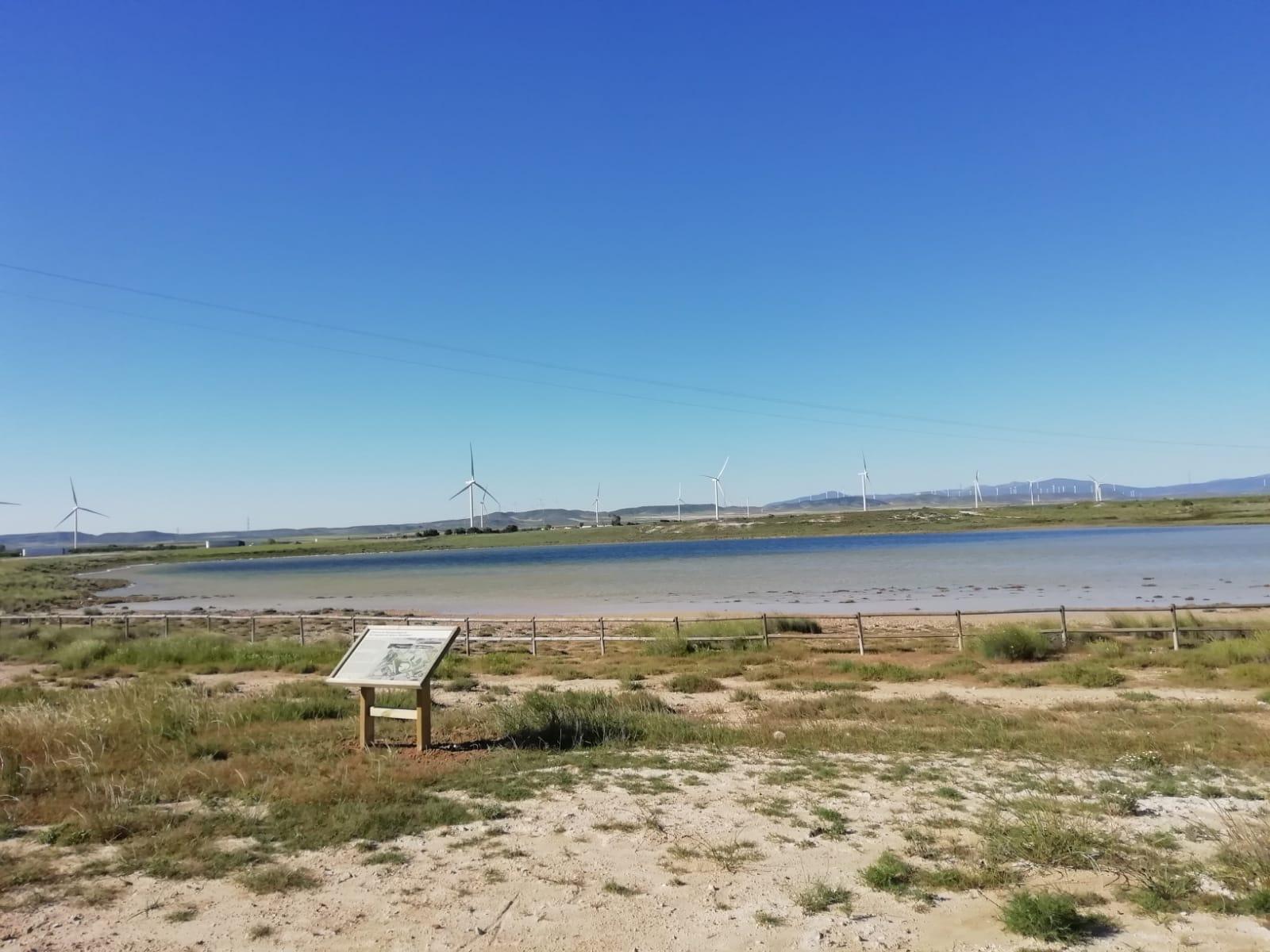 Zaragoza cuenta con un nuevo espacio para la promoción del turismo ornitológico en las lagunas de Agón y Plantados