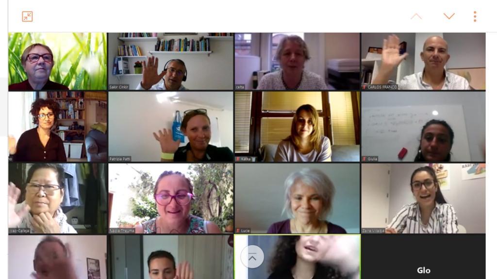El equipo de GEINNOVACIÓN participa en la reunión de presentación de los módulos de formación del proyecto WISED